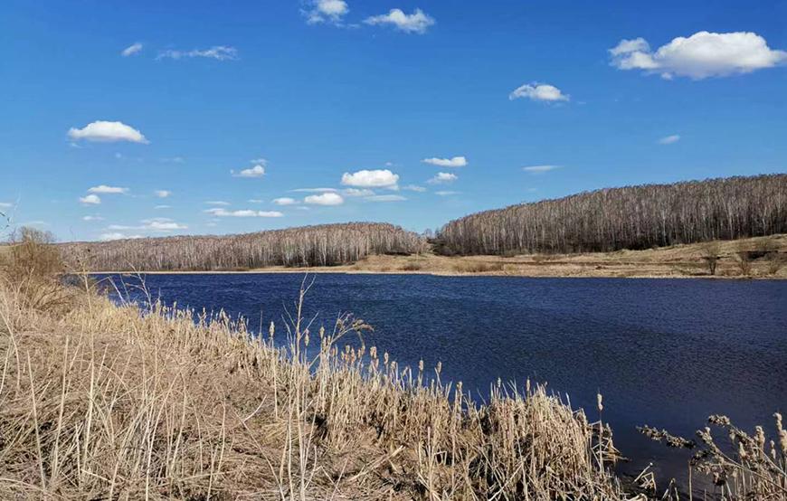 俄罗斯季格里茨科耶农场有限公司6